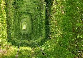 jalan hijau