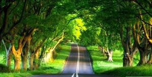 jalan-lurus-indah1.jpg